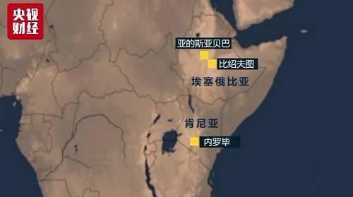 客机起飞后不久,于8点44分左右在距首都约45公里的比绍夫图附近坠毁。24小时飞行雷达网的数据显示,客机起飞后,曾经有突然下降的迹象,随后又有拉升,之后消失在雷达中。