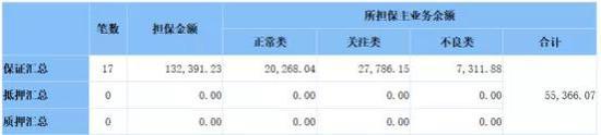 (爆料人提供:青岛林业投资对外担保情况 单位:万元)
