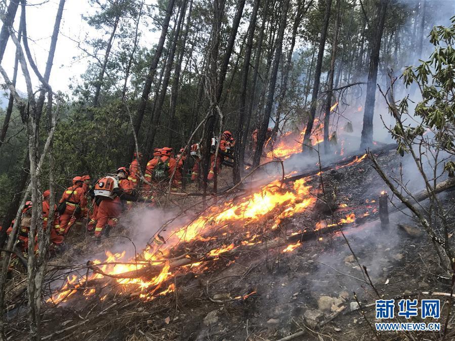 四川冕宁发生森林火灾255名消防指战员前往扑救