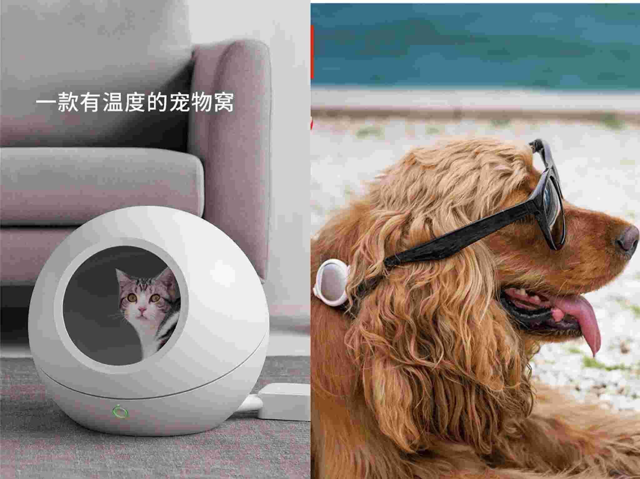 图片来源/小佩宠物用品旗舰店截图