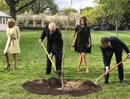 """""""吾们会再送他一棵,这算不上是啥哀剧""""。6月11日,马克龙在。日内瓦参添国际劳工机关会议期间,就他送给特朗普的""""友谊之树""""物化亡的消休进走了回答。"""