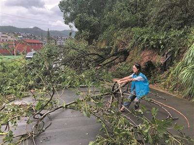 一个90后村干部的台风眼日志