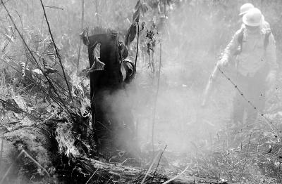 巴西称控制住    亚马孙雨林火势