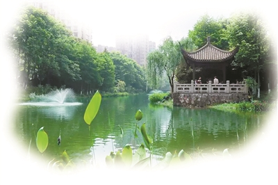 <b>今年,杭州市至少创建25条美丽河道</b>