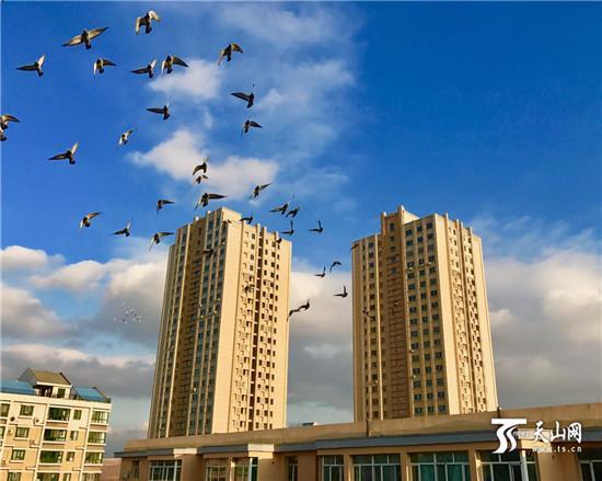 今日(10月23日)北疆大部天气晴冷 乌鲁木齐最低温-3℃