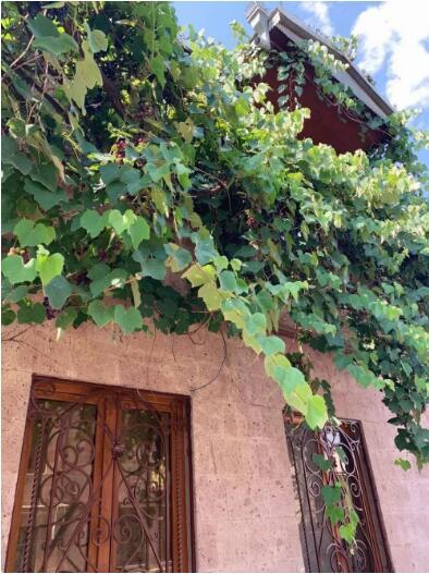 Natália在亚美尼亚的住处