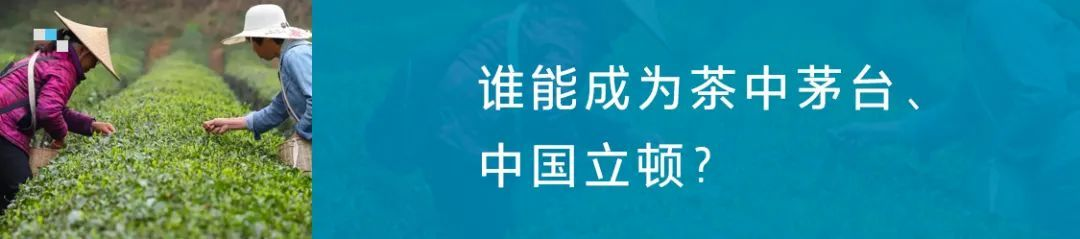 完美日记、钟薛高、良品铺子、王饱饱.....是谁在推着他们向前冲