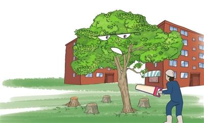 桂花巷里砍桂花,景观治理何以成了破坏?