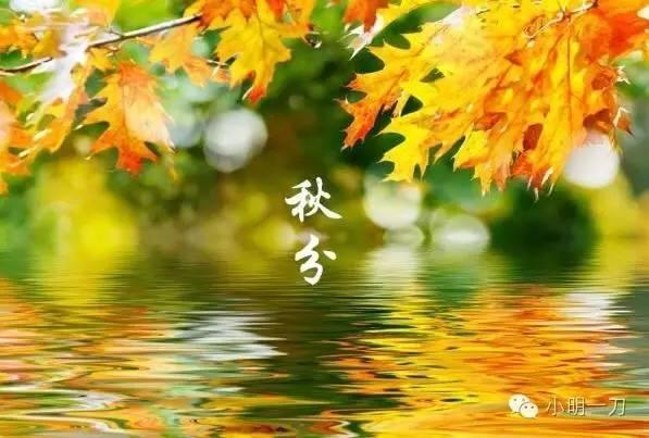2020秋分是几月几日几时几分 秋分节气含义习俗 今年将迎124年来最早秋分