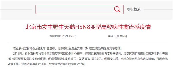 北京发生野生天鹅禽流感疫情:中国大陆第一次