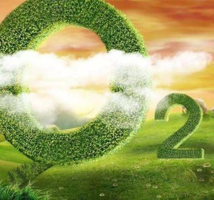地球大气含氧量骤减,未来10亿年大部分物种或将灭绝