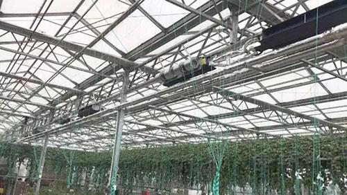 美的中央空调在青岛幸福村温室大棚中的应用