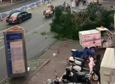 超强阵风突袭南宁 树被连根拔起 行人寸步难行:网友晒现场视频