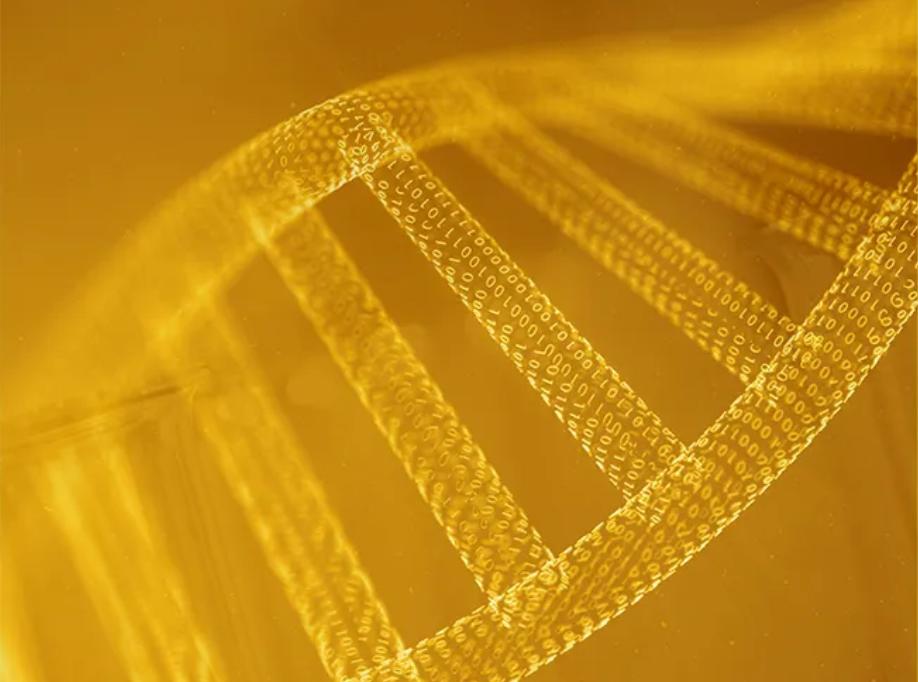 细胞级焕新护肤!伊姿法玛GENESKIN系列开启科学有效抗老