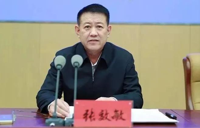 退休6个月,内蒙古自治区公安厅原副厅长张效敏被查